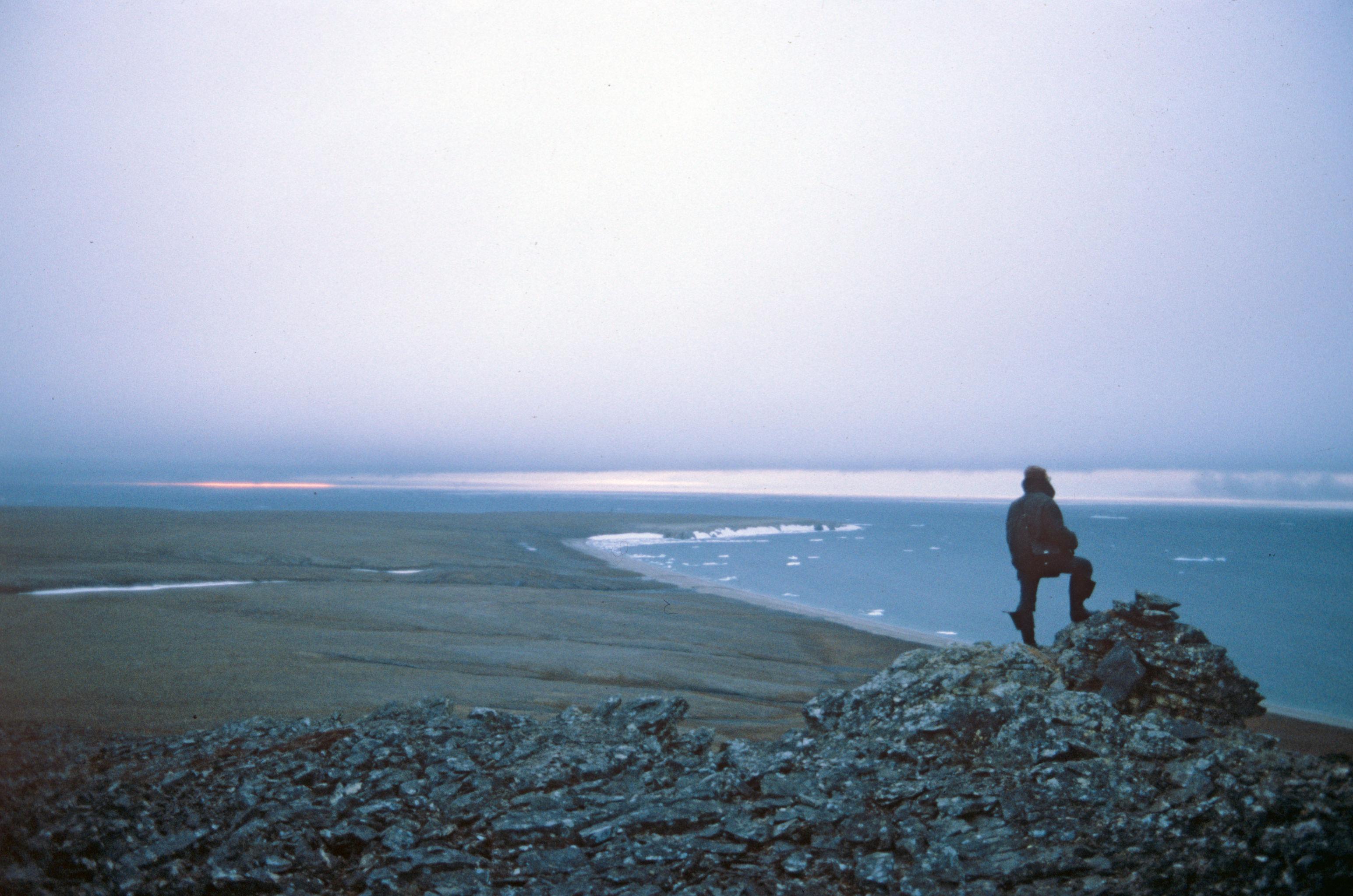 Isola di Vrangel